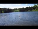 ООткрытие купального сезона на Урале ! Посёлок Рудничный , озеро Белка.