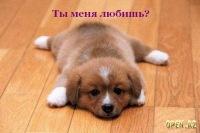 Ксения Абашева, 5 июля , Глазов, id185624112