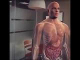 Изучение анатомии с помощью технологии дополненной реальности....