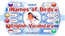 Bài học Tên của các loài chim Học từ vựng tiếng Anh với hình ảnh Sách từ
