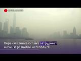 Власти Шанхая хотят сократить население на 5 млн человек