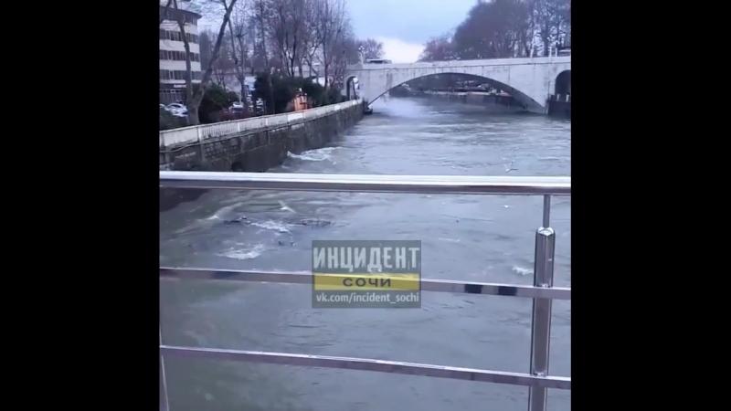 Течения реки против течения