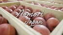 Aomori Gourmet Culture Japan 4K Ultra HD 青森