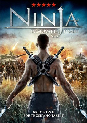Ниндзя: Шаг в неизвестность (2014)