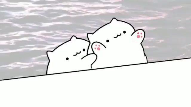"""Bongo Cat on Instagram: """"Katzen Titanic 🐈 . . . . . bongocat bongocatmeme meme dank dankmeme cat bestmeme deutsch german germany 😂 lol ..."""