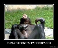 Ананимст Кургунов, 3 июля , Москва, id185874453