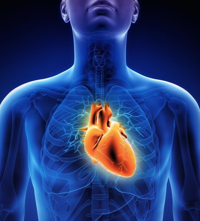 Эхокардиография использует звуковые волны для визуализации сердца.