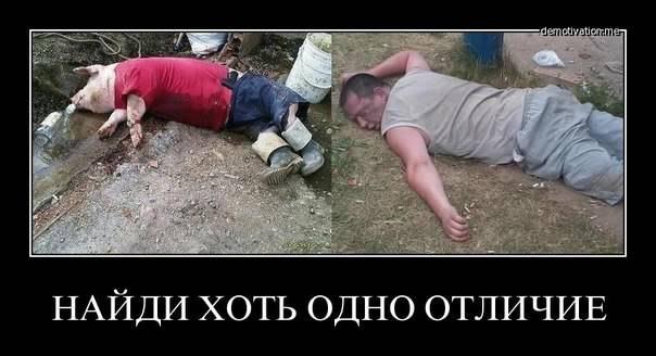 Соболев раскрыл планы Рады на завтрашний день - Цензор.НЕТ 783