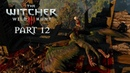 The Witcher 3 Wild Hunt Walkthrough Gameplay Part 12 - Family Matters [Part IV] (PS4)