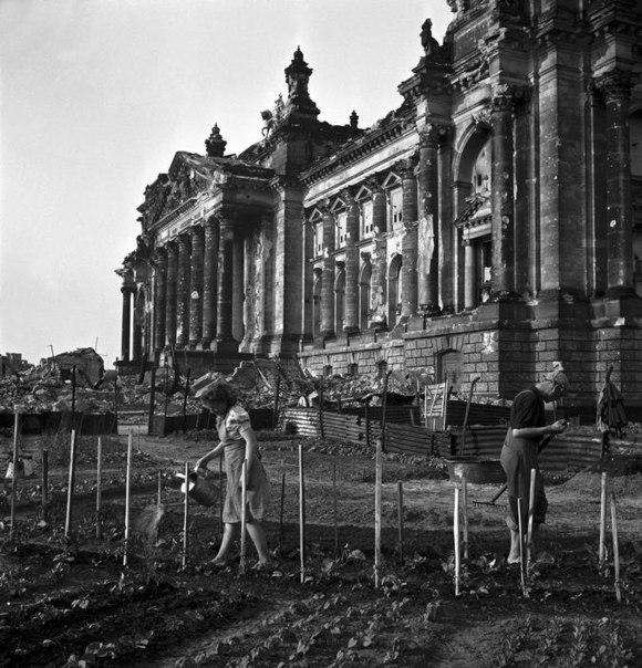 Огород рядом с Рейхстагом. Берлин, Советская зона оккупации. Германия. 1945 год.