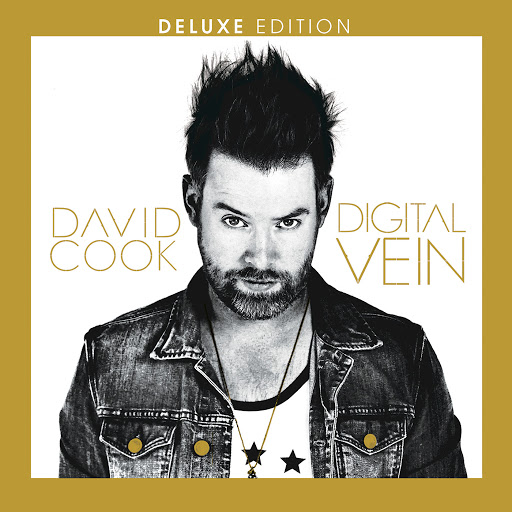 David Cook альбом Digital Vein (Deluxe Version)