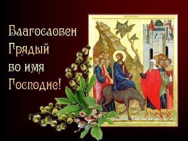 Вход господень в иерусалим открытка поздравление