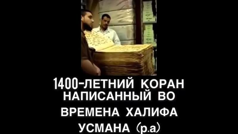 VID_20180605_223108.mp4