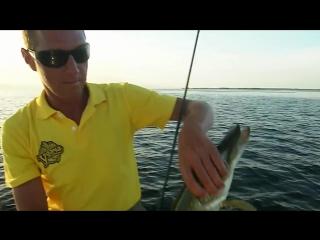 Константин Кузьмин. Рыбалка на Средней Волге. Щука на джиг и воблеры