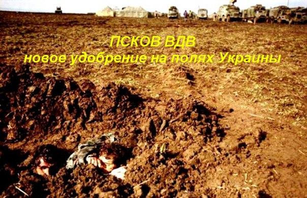 К украинским войскам в Иловайске идет подмога, - Семенченко - Цензор.НЕТ 9364