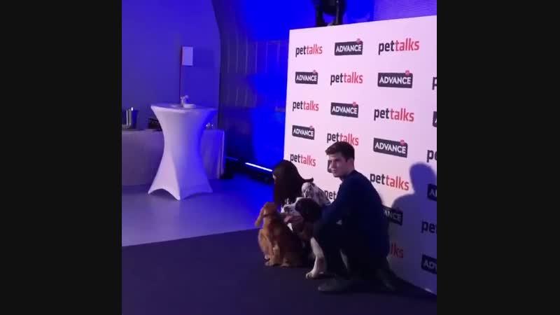 Мигель на мероприятии «Pet Talk» 16.11.18