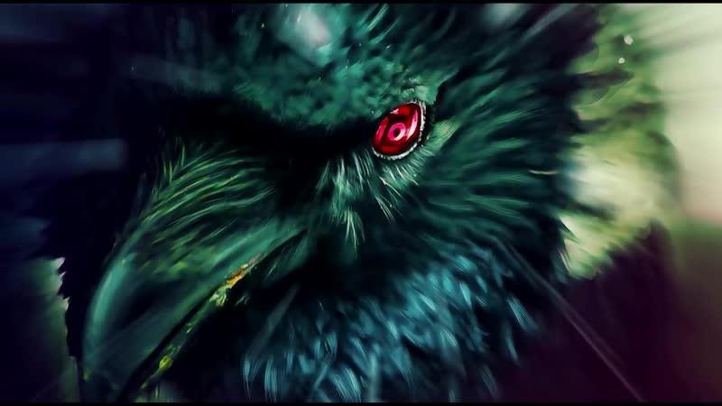 Животные в мифологии Ворон