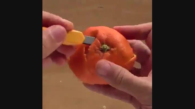 Meyve kabuğundan şekiller
