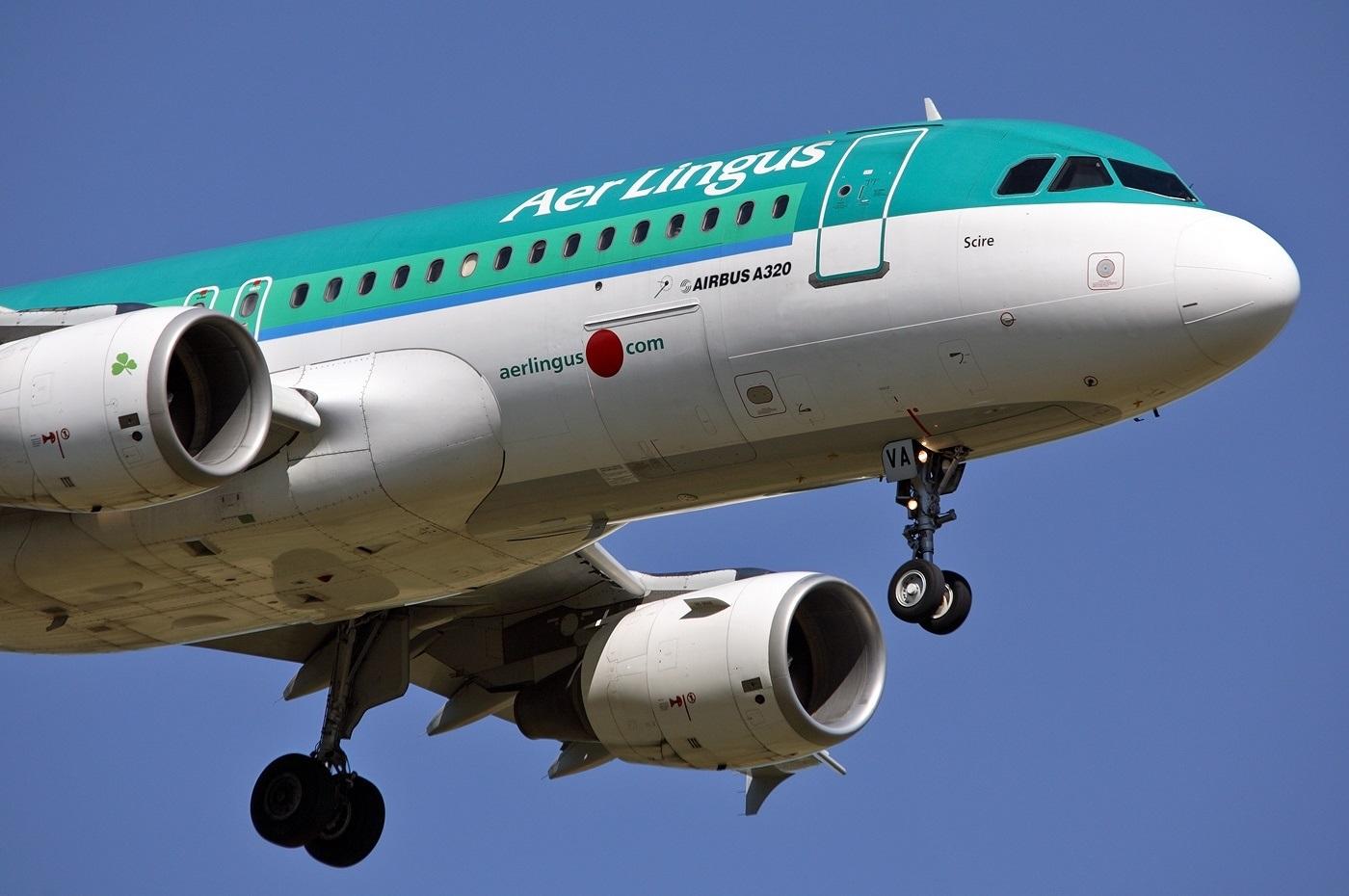 Лайнер авиакомпании Aer Lingus крупным планом