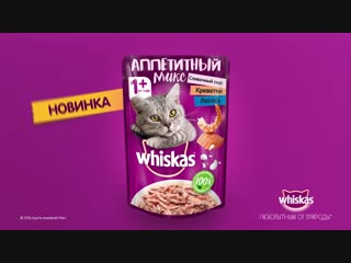 RUSSIA_WHISKAS_SocialContent(VideoPosts)_6sec_2018_135