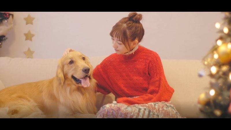 伊藤千晃 /「Eternal Story」Official Music Video(Short Version)