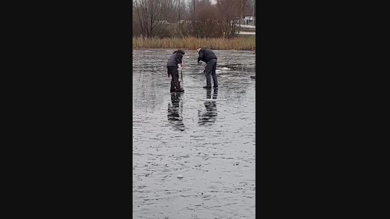 Рыбалка в Южном Бутово