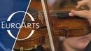 Renaud Capuçon Beethoven - Romance for Violin and Orchestra No. 2 in F major, Op. 50 Kurt Masur
