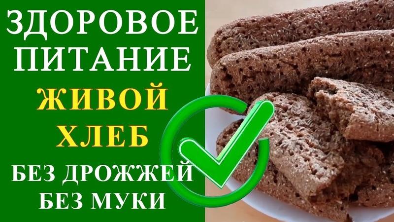 Супер быстрый рецепт - Живой хлеб из пророщенного зерна ржи без дрожжей   Питание Диета при раке » Freewka.com - Смотреть онлайн в хорощем качестве