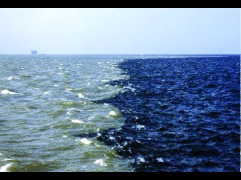 Amazing Facts About Gulf Of Alaska Where 2 Oceans Meet But Dont Mix