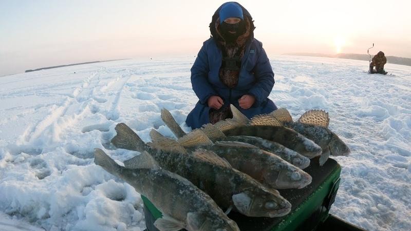 Зимняя Рыбалка 2019 В ПОИСКАХ БЕРША . Два дня рыбалки на Берша, Волга. Непредсказуемая погода.