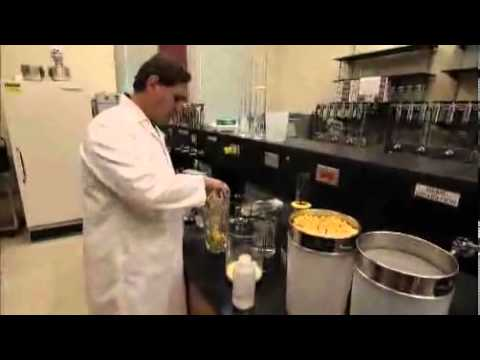 Bioplastic Made from Corn
