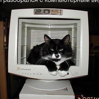 Рома Че, 24 апреля , Новосибирск, id208089648