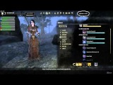 Naex - The Elder Scrolls Online - Breton Templar Veteran Rank 7