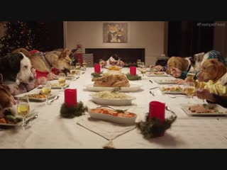 Freshpet Holiday Feast - 13 Dogs and 1 Cat Eating with Human Hands