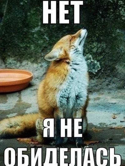 Наталия Лисицына, 17 ноября 1989, Ставрополь, id132584158