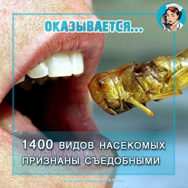 https://pp.userapi.com/c849332/v849332608/31ea6/UOf5k8VGjKk.jpg