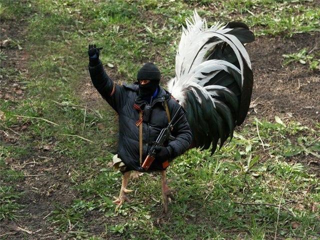"""Боевики продолжают нарушать """"перемирие"""" на востоке Украины, - спикер АТО - Цензор.НЕТ 3729"""