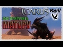Icarus Как приручить Матуру Matura Taming