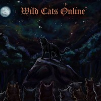 Коты воители игры онлайн