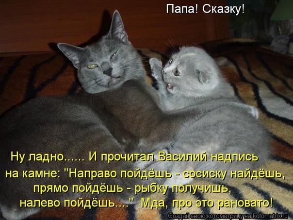 http://cs411523.vk.me/v411523175/3d3f/8MYFSD1T2R0.jpg