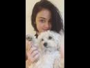 Видео с Instagram stories ›› 25 мая