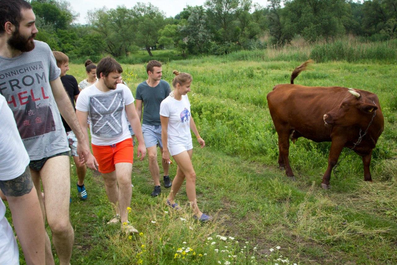 Lena Volova meets a friendly cow