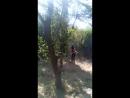 Тбилиси сражение с сорняками