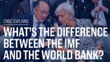 What's the difference between the IMF and the World Bank CNBC Explains