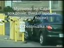 Приколы_на_дорогах