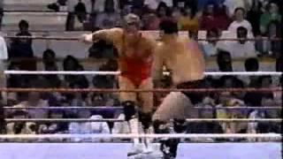Dino Bravo vs. Louie Spicolli (08-05-1991)