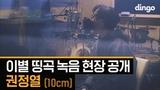 Dingo music Ha Sang Wook x Kwon Jung Yeol (10cm)