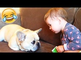 The Cutest Kids and Animals Compilation! Funny Baby Videos | July 2018
