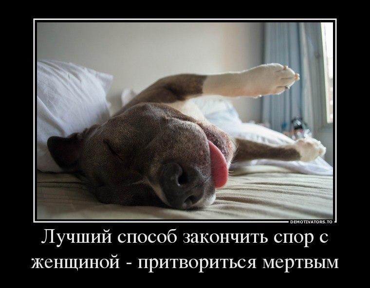 Последовал купить дачу в иркутске на авито с фото обычным человеком, убивающим