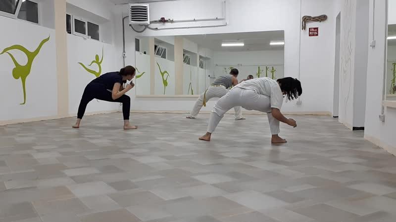 Боевая capoeira